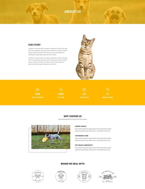 Pet Care About Layout