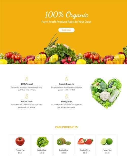 Organic Food Layout