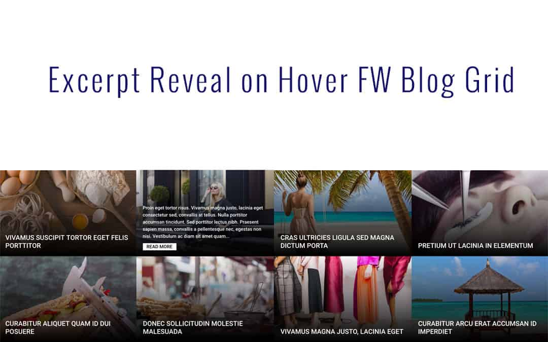 Excerpt Reveal on Hover FW Blog Grid