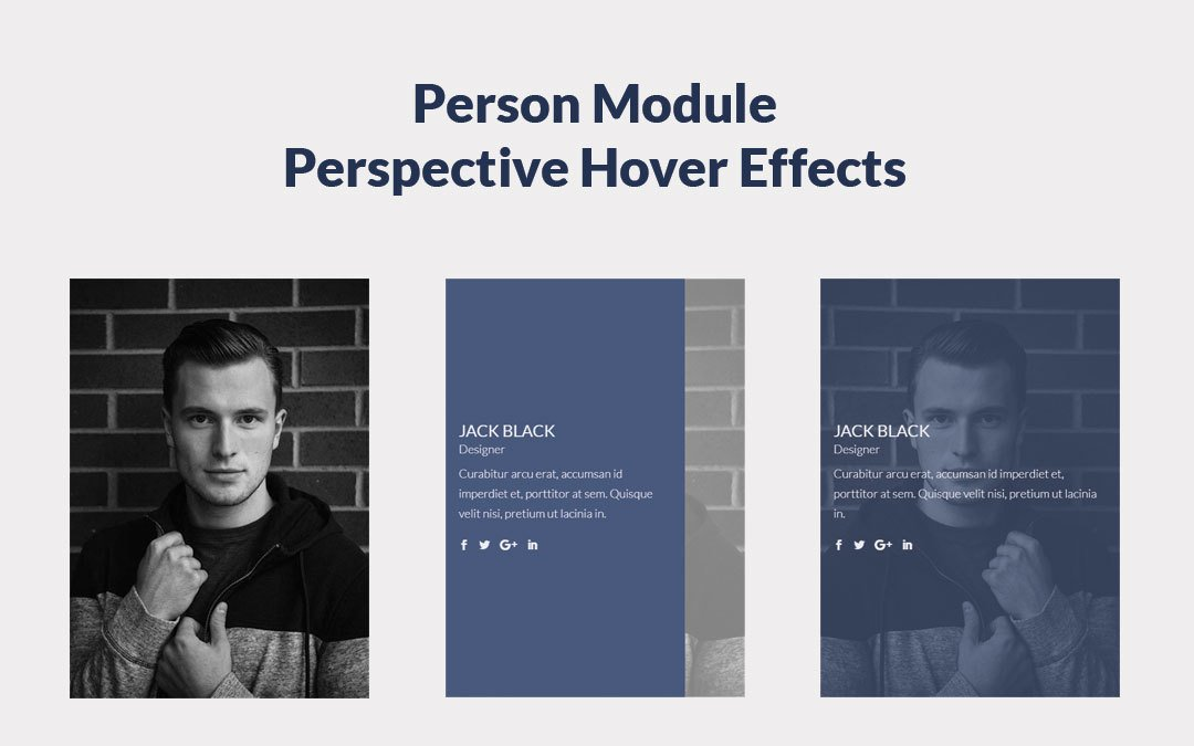 Person Module Perspective Hover Effects