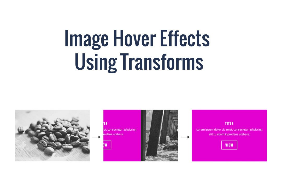 Image Hover Effects Using Transforms
