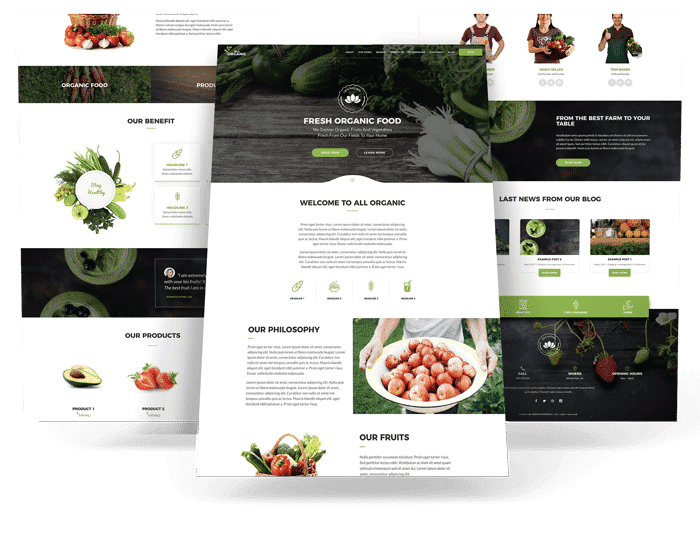 All Organic Divi child theme