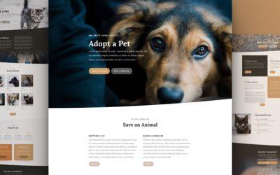 Animal Shelter Layout Pack
