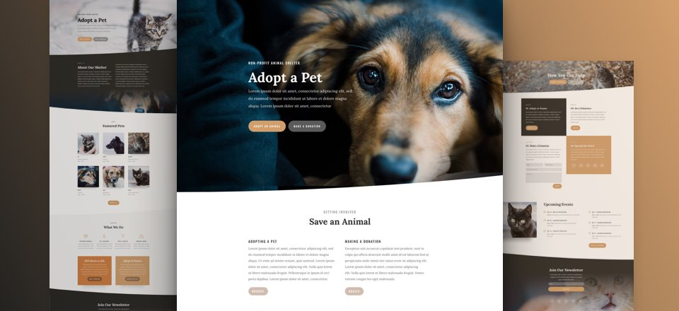 Animal Shelter Layout Pack