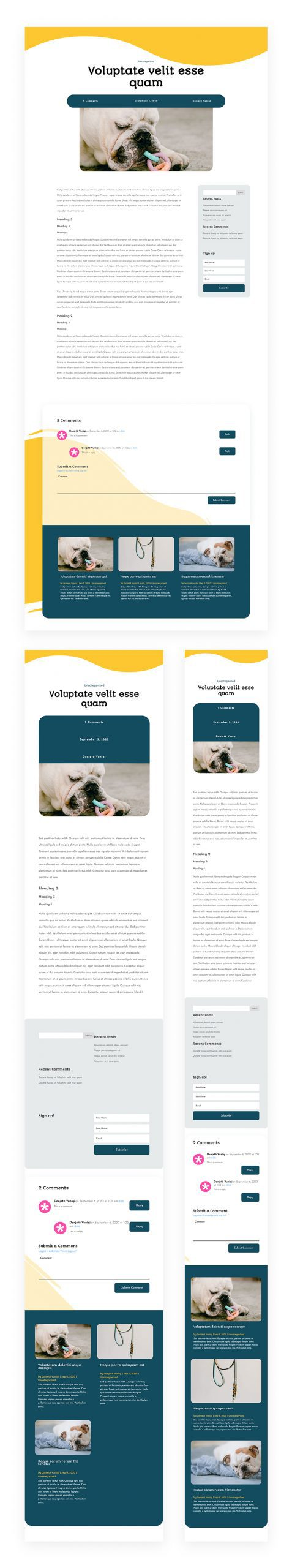 Blog Post Template for Pet Supply Layout